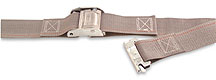 Cargo control logistic strap with cam buckle